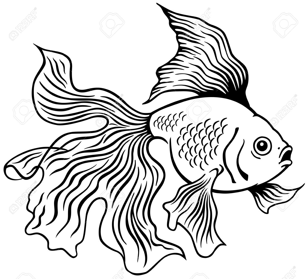 Goldfish Or Golden Fish, Black And White Side View Outline Image ... for Goldfish Clipart Black And White  113lpg