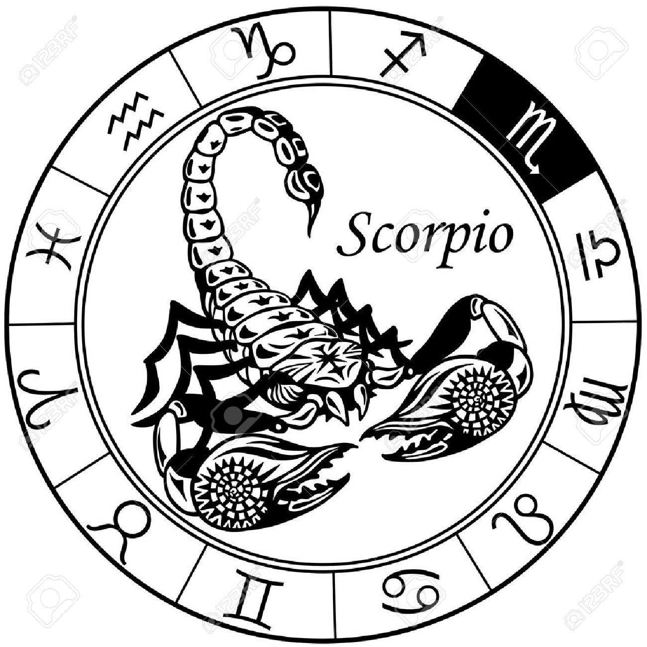 scorpion or scorpio astrological zodiac sign, black and white..