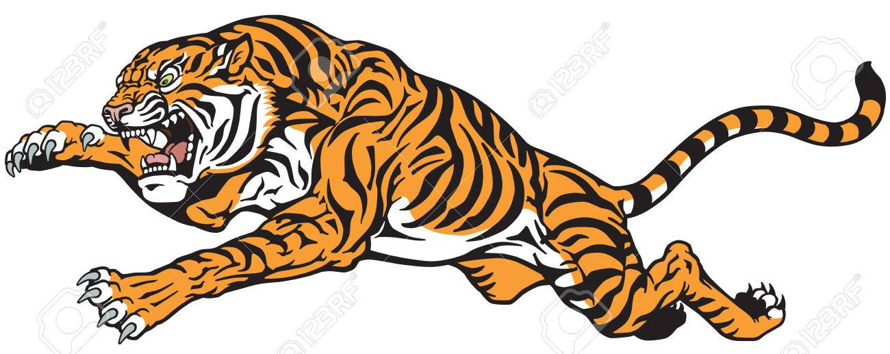 tiger jump angry big cat tattoo vector isolated on white royalty
