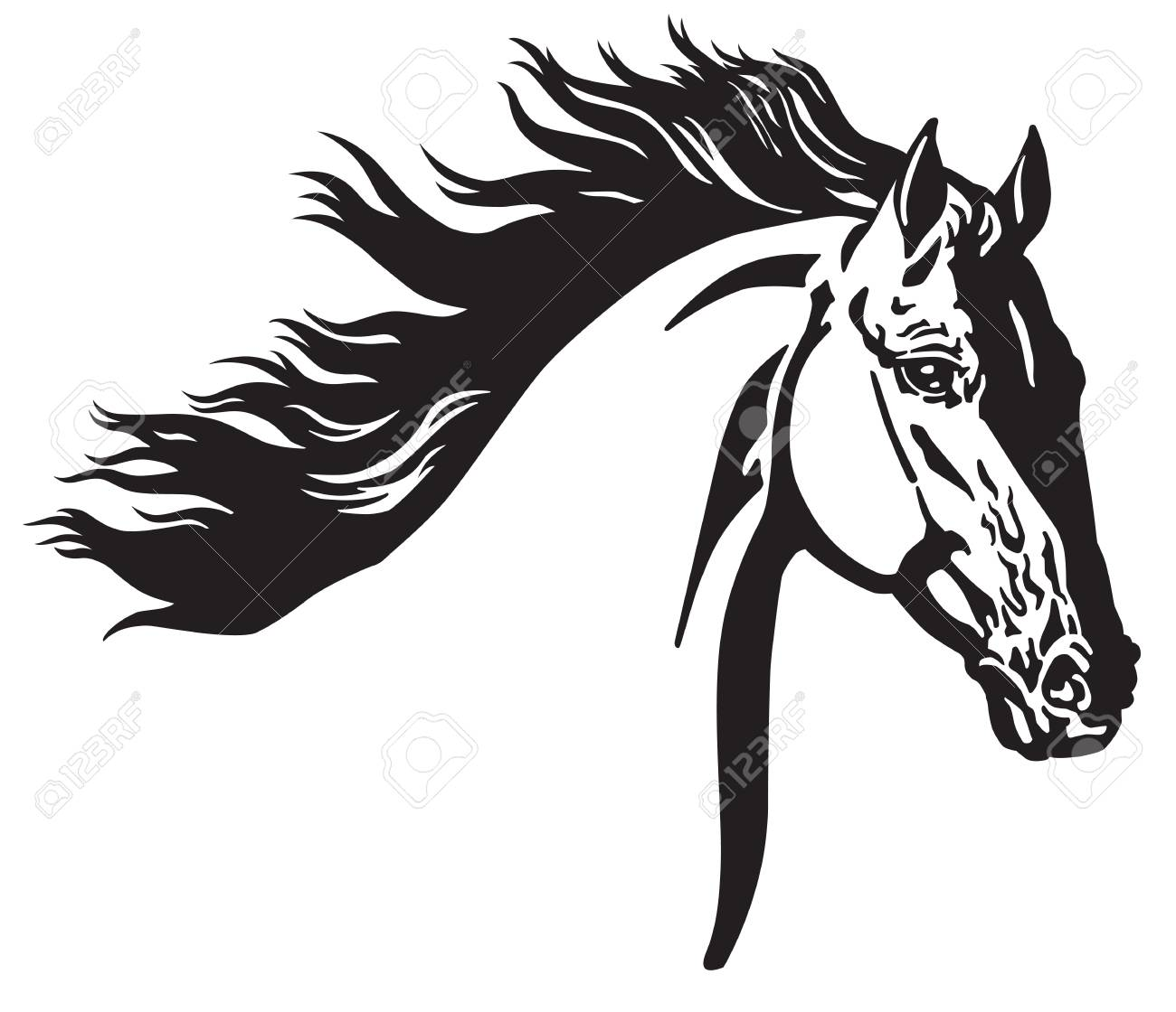 Head Of Wild Horse Black And White Vector Illustration Royalty Free Cliparts Vectors And Stock Illustration Image 109586438