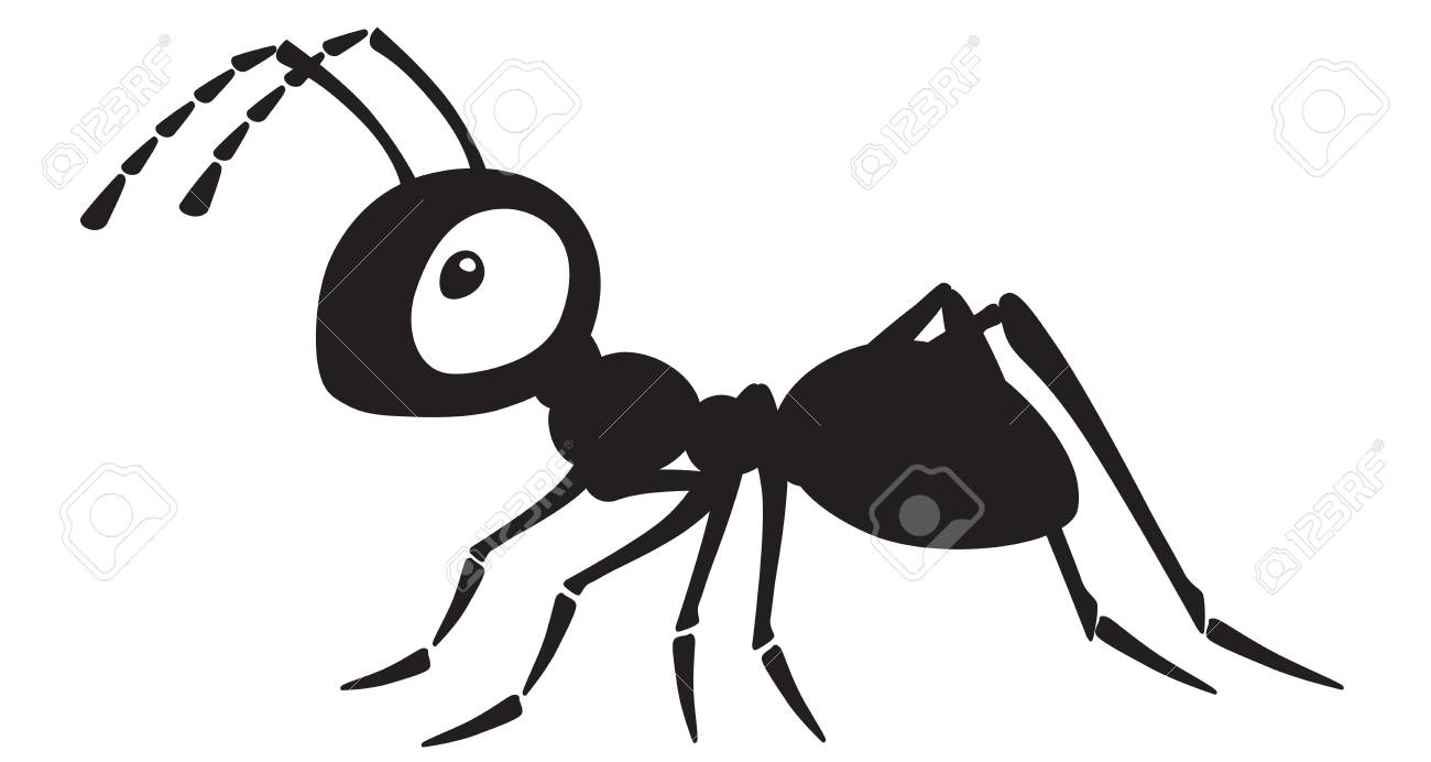 cartoon ant insect . Side view black and white vector illustration - 110264040