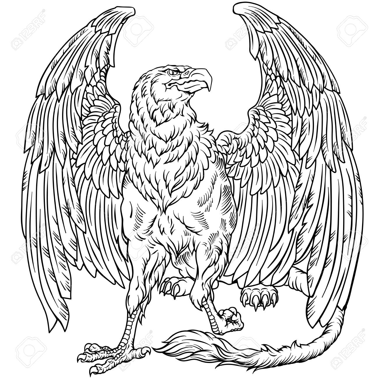 Griffin Griffon Or Gryphon A Mythical Beast Having The Body Royalty Free Cliparts Vectors And Stock Illustration Image 149818671 Check out our sitting lion selection for the very best in unique or custom, handmade pieces from our shops. griffin griffon or gryphon a mythical beast having the body