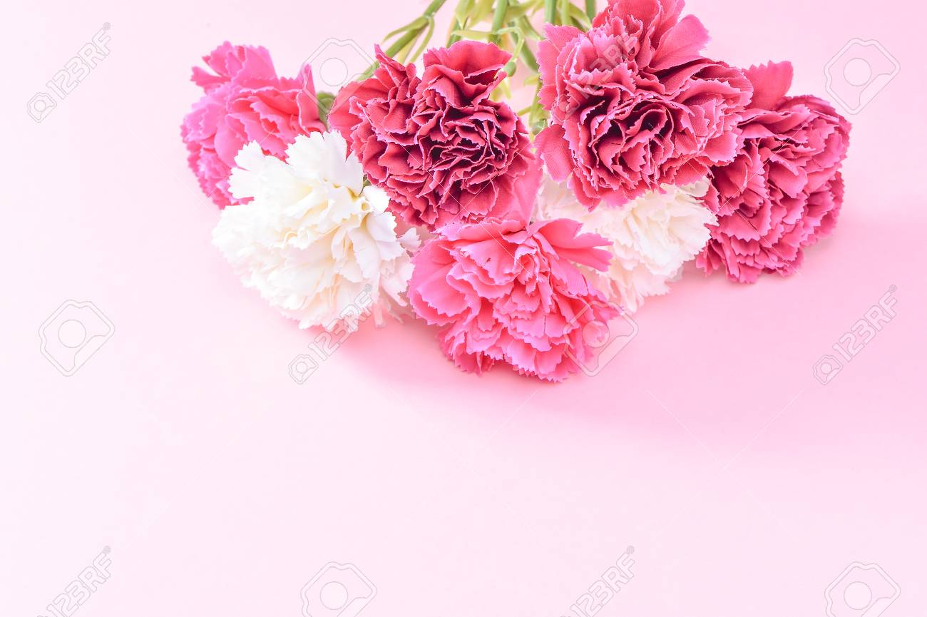 May mothers day carnation bunch of flowers bouquet top view may mothers day carnation bunch of flowers bouquet top view blank for text pink izmirmasajfo