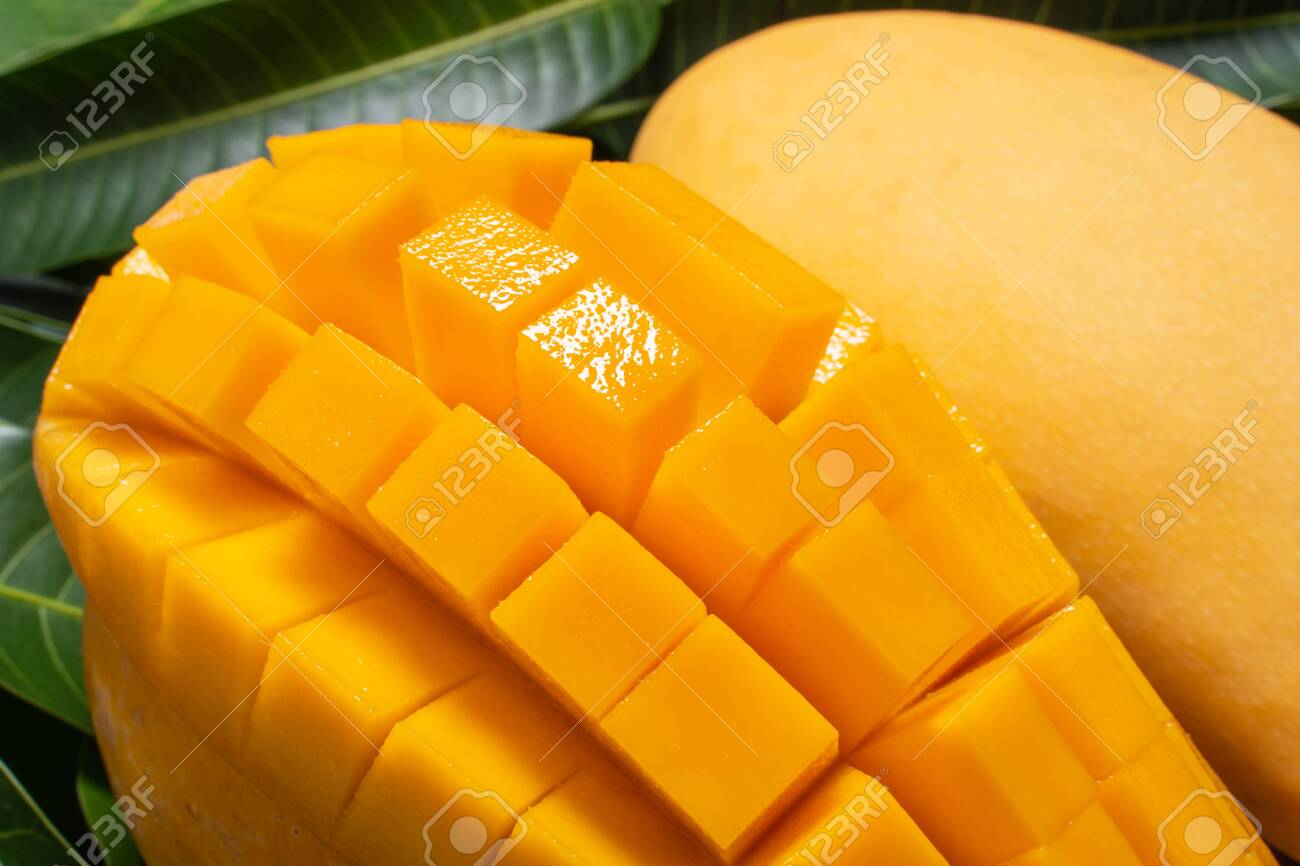 Mango, tropical fruit, in a bamboo wooden sieve basket on green leaf background, top view, full frame, beautiful, ripe harvest design concept. - 144534364