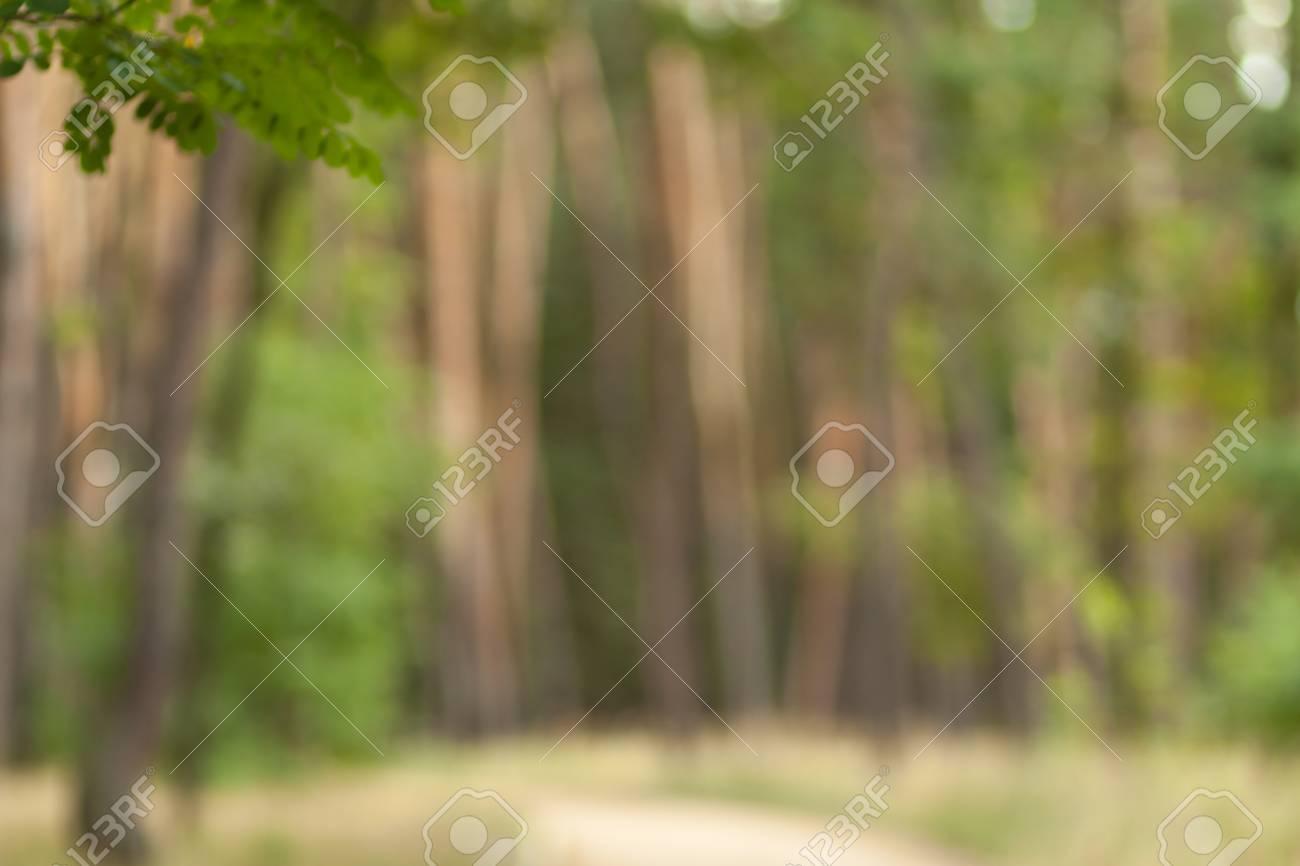 ぼやけて自然壁紙 森背景のボケ味 グリーンは あなたの設計のための