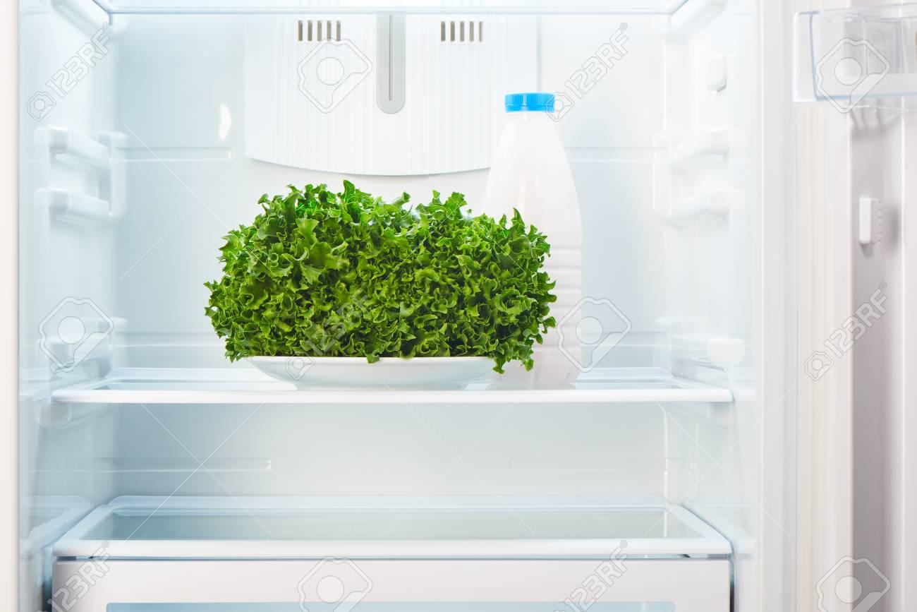 Kühlschrank Platte : Grüner salat auf weißer platte und eine glasflasche jogurt im