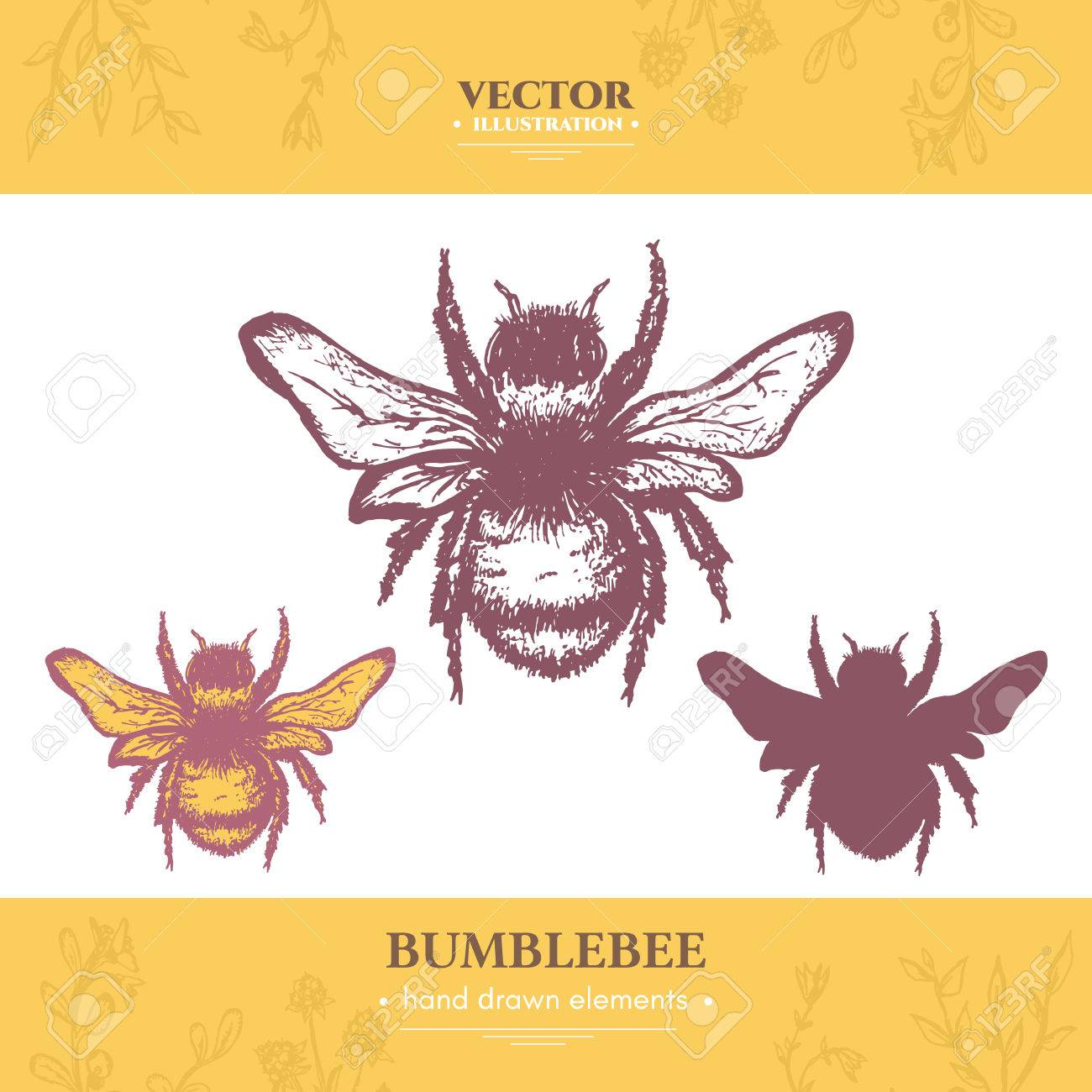 Bumblebee collection vintage style ink hand drawn vector royalty bumblebee collection vintage style ink hand drawn vector stock vector 61054696 biocorpaavc