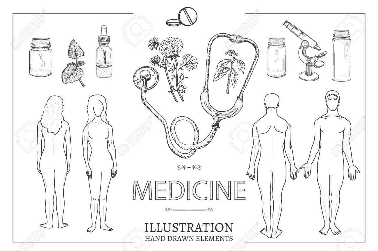 Médico, Conjunto, Hombre, Y, Mujer, Macho, Y, Hembra, Anatomía ...