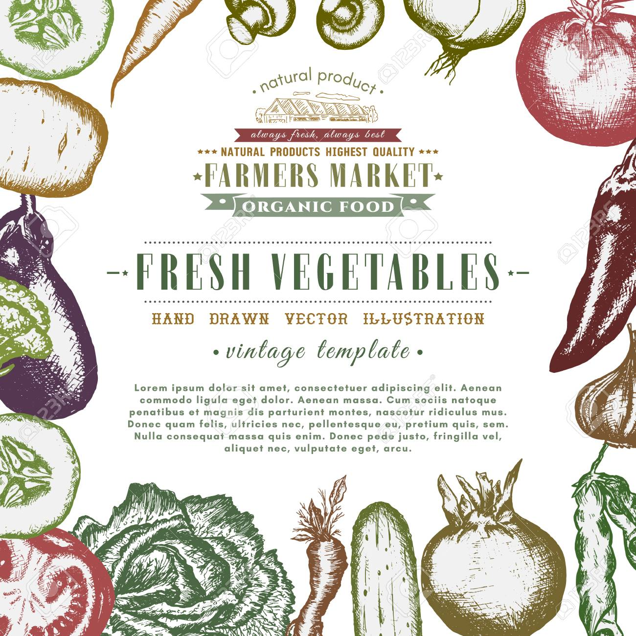 Eco Food Design Ink Hand Drawn, Vegetables Sketch Organic Products ...