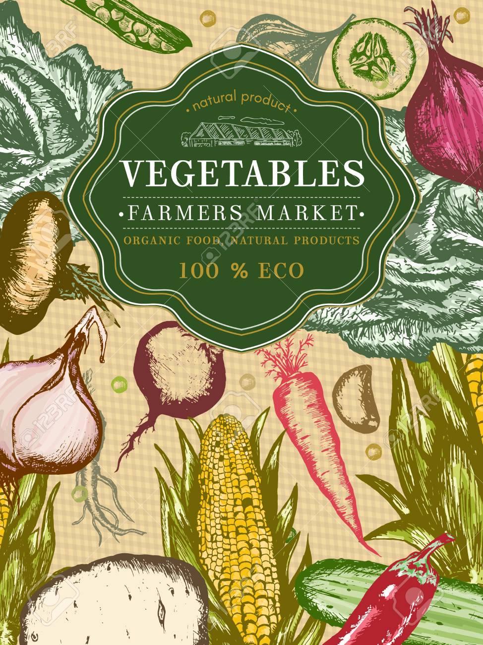 Vegetables Vintage Poster Hand Drawn Eco Food, Vegetables Farmer ...