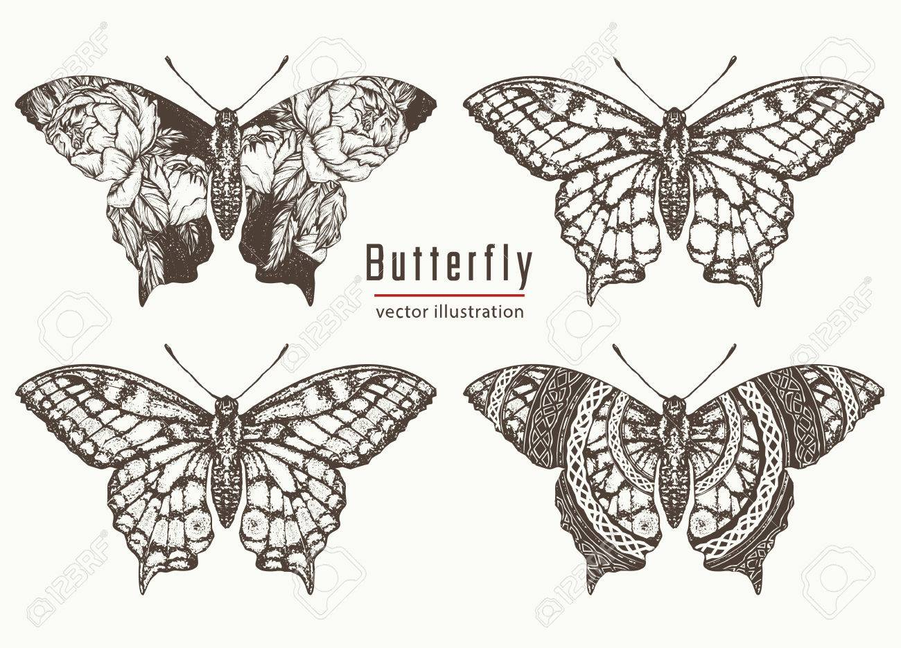 7f23d547fec18 Butterfly hand drawn collection. Realistic butterfly tattoo and t-shirt  design. Beautiful Swallowtail