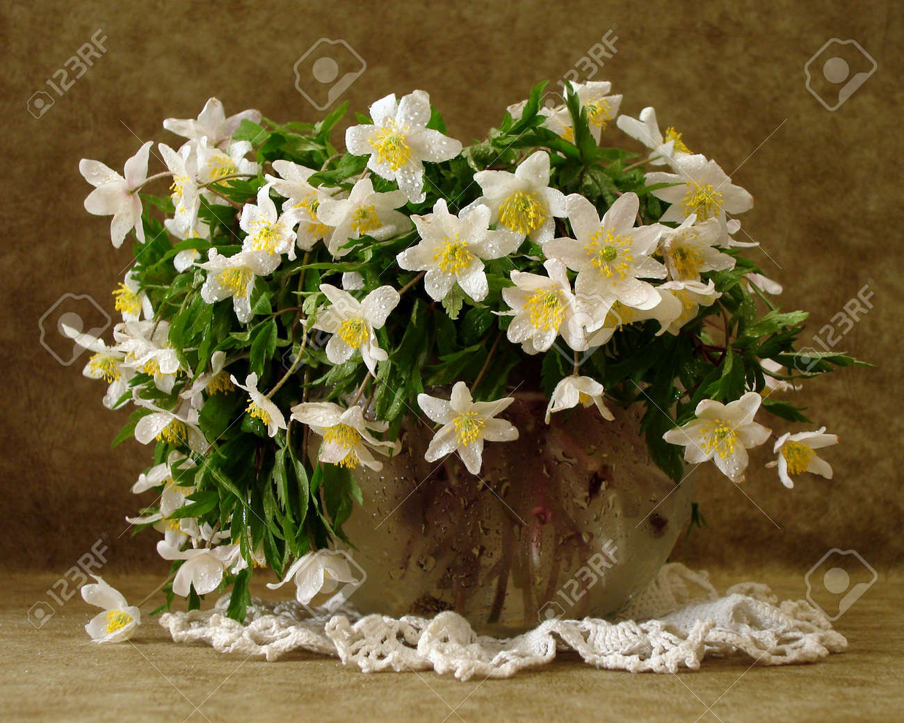 white flowers in vase over brown background Stock Photo - 2110010