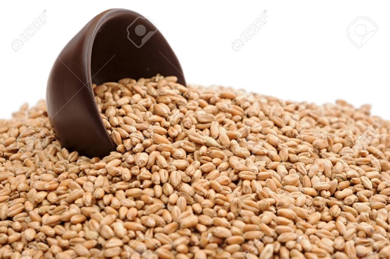 Wheat in bowl isolated on white Stock Photo - 13211675