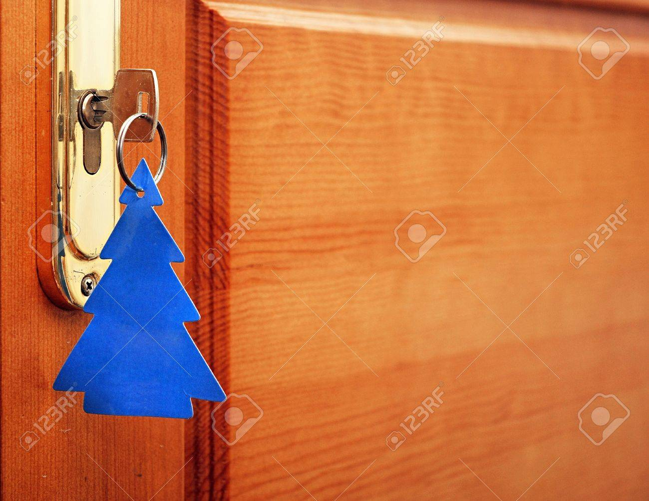 key in keyhole with blank tag in the form of a Christmas tree Stock Photo - 16386295
