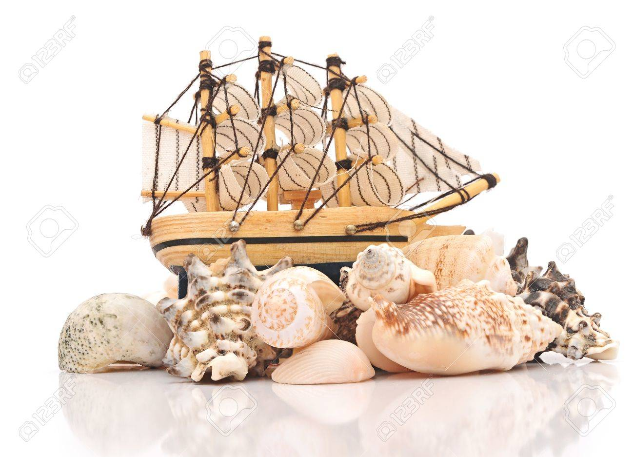 Sailing vessel and sea shells on white background Stock Photo - 16945521