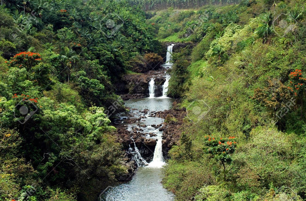 Ein Cascading Wasserfall Der Welt Botanischen Gärten In Hawaii ...