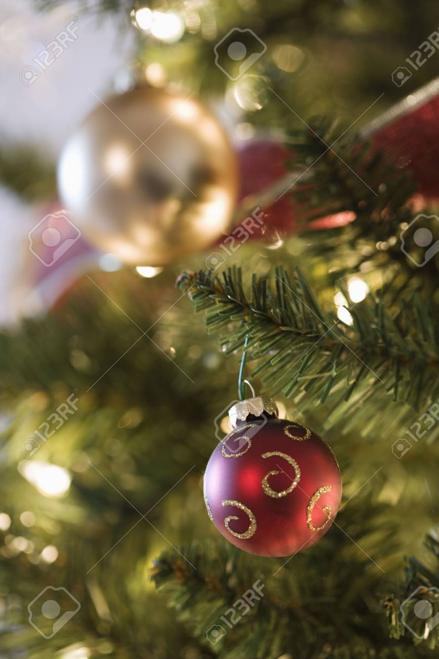 Gold and red ornaments - Close Up Of Gold And Red Ornaments Hanging In Christmas Tree Stock Photo 2176510
