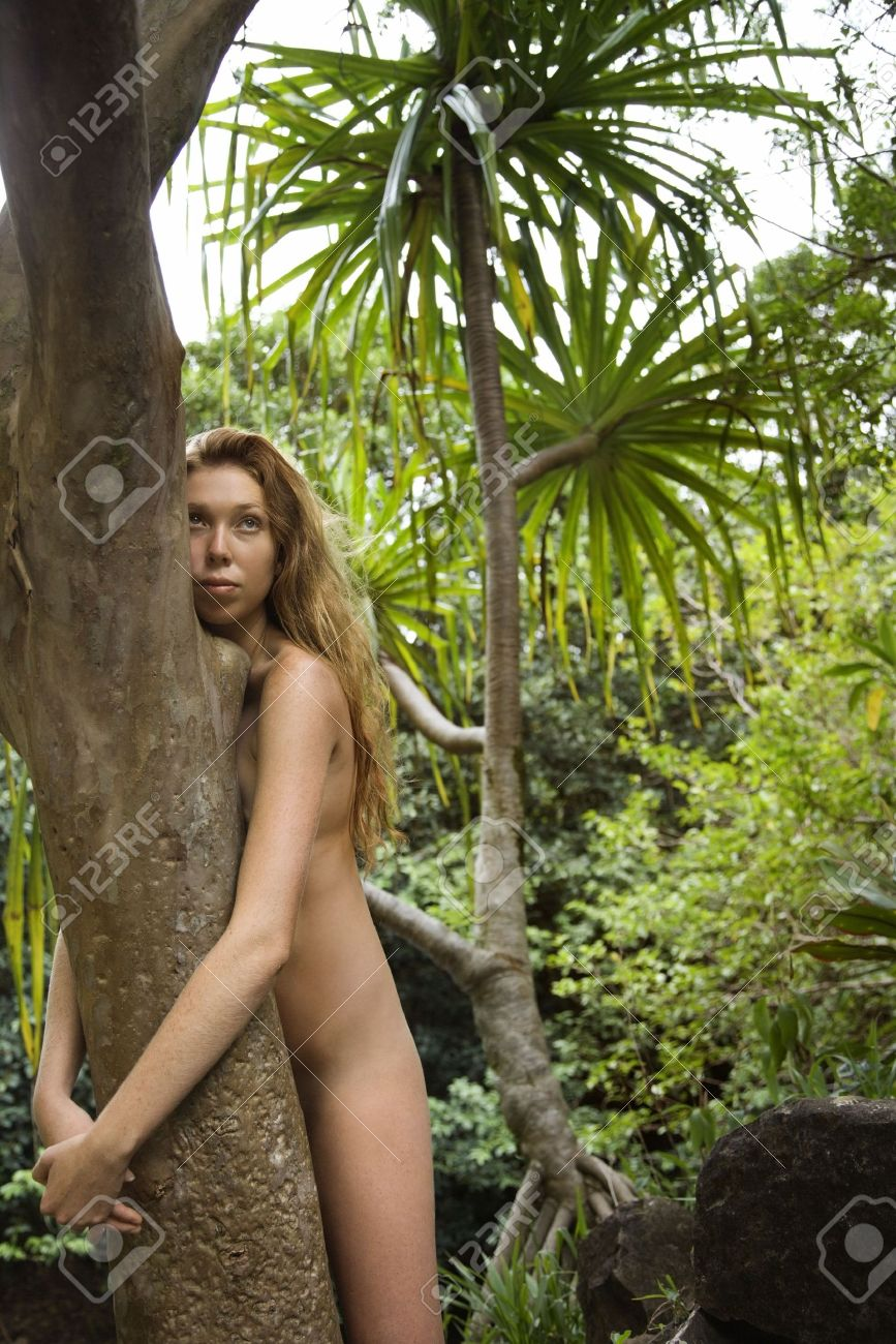 young nudist naked forest naked trees: Nude Caucasian young adult woman in lush forest hugging tree.  Stock Photo