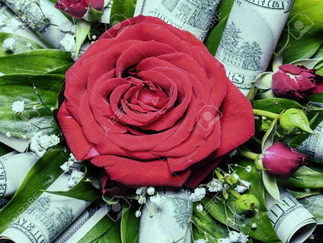 Rot Stieg In Blumenstrauß Mit Hundert Dollar Noten, Ideales Geschenk ...