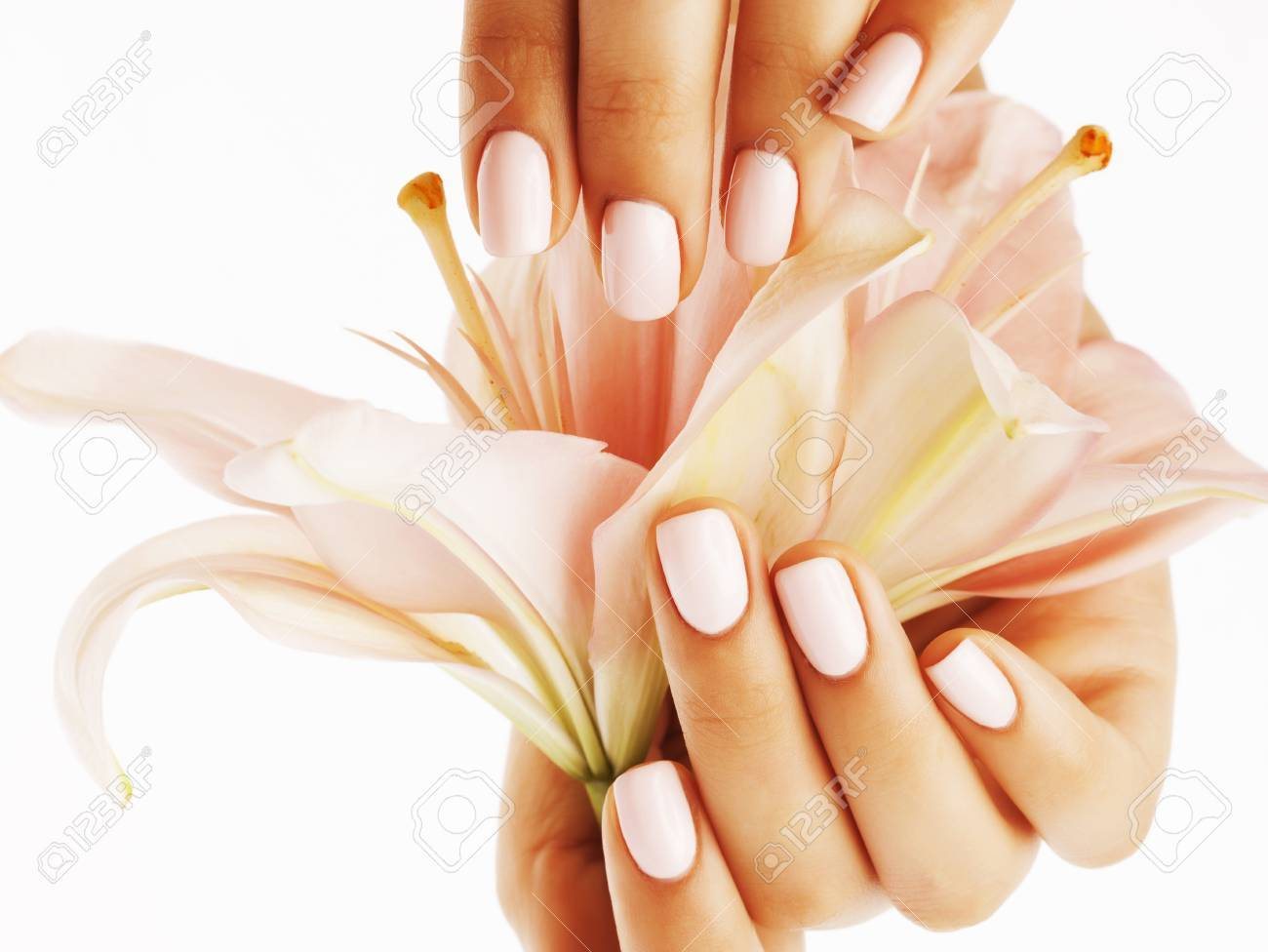 Beauty delicate hands with manicure holding flower lily close beauty delicate hands with manicure holding flower lily close up isolated on white perfect shape stock izmirmasajfo