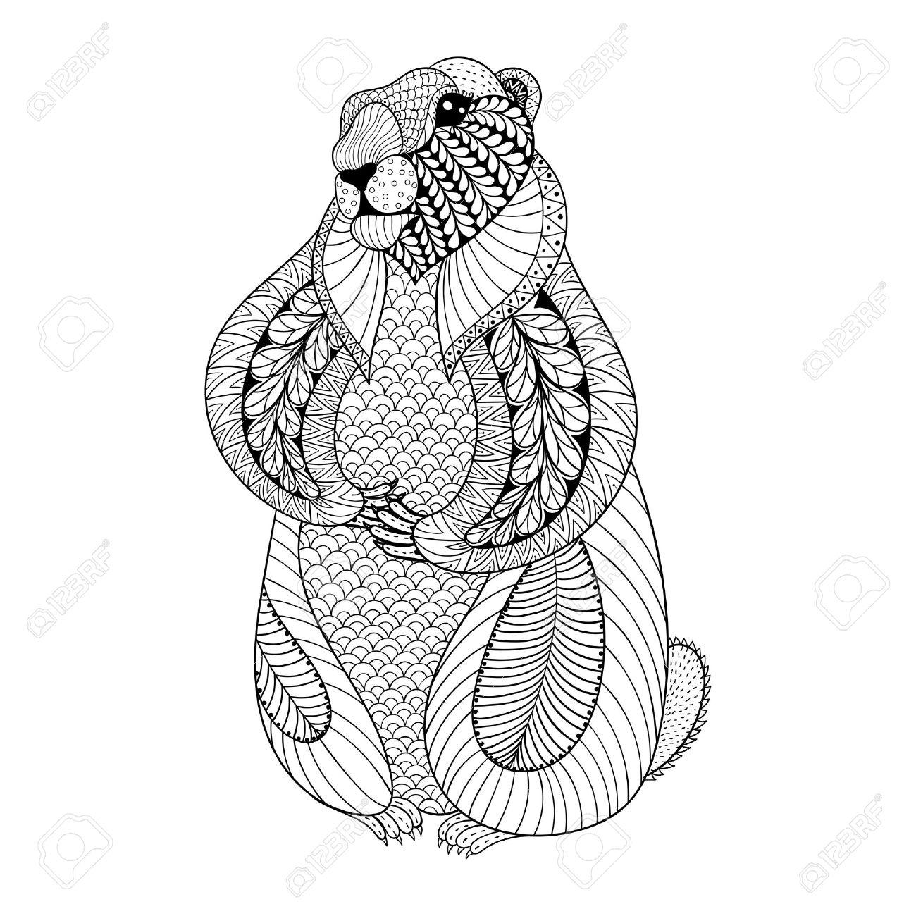 Dibujado A Mano De La Marmota Para Colorear Páginas Para Adultos En ...