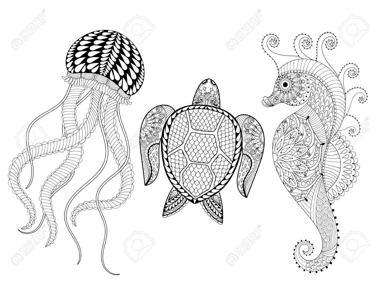 Dibujado A Mano Del Caballo De Mar, Medusas Y La Tortuga Por Páginas ...