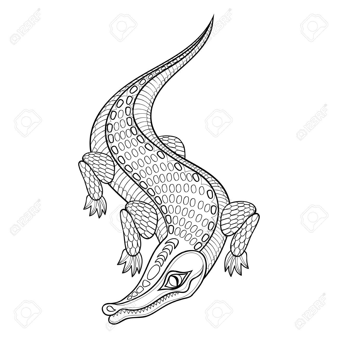 Hand Zentangled Krokodil Für Erwachsene Malvorlagen In Doodle ...