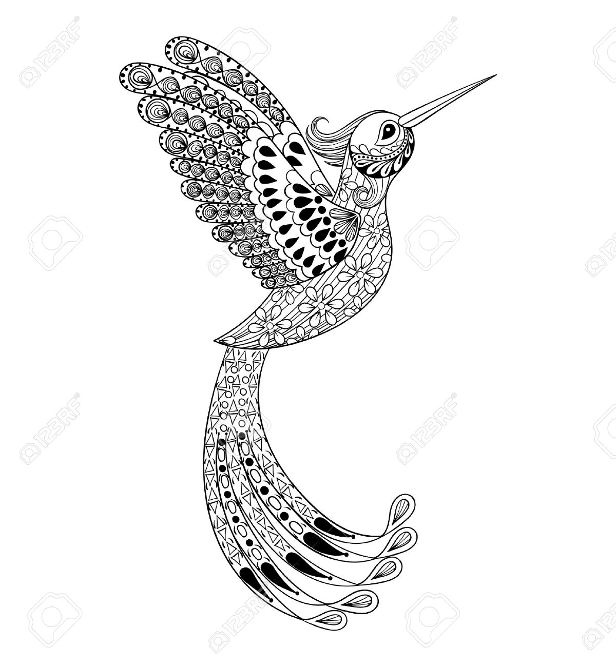 Hummingbird Animal Coloring Pages. Zentangle hand drawn artistically Hummingbird  flying bird tribal totem for adult Coloring Page or tattoo Hand Drawn Artistically Flying Bird Tribal