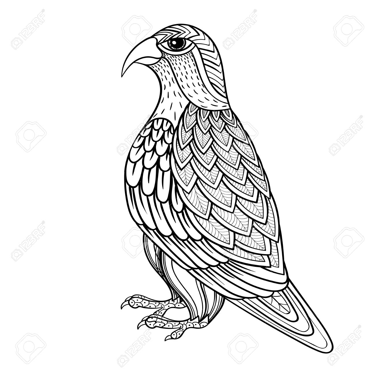 Zentangle Vector Falcon Bird Hawk Of Prey Predatory For Adult