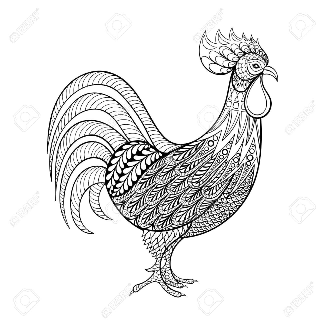 Rooster chicken domestic farmer bird for coloring pages zentangle illustartion for adult anti