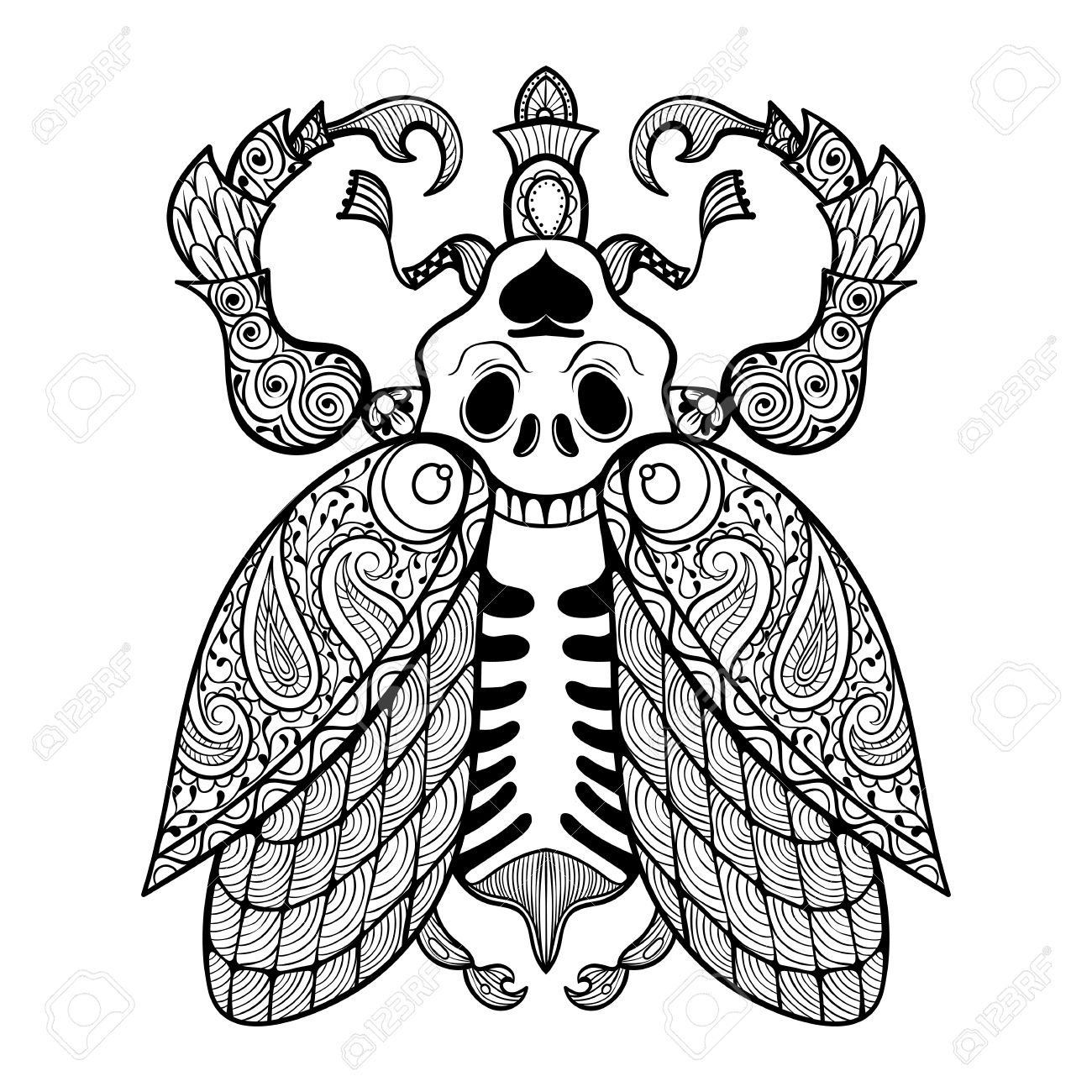 coloring page of bug with skull zentangle illustartion tribal