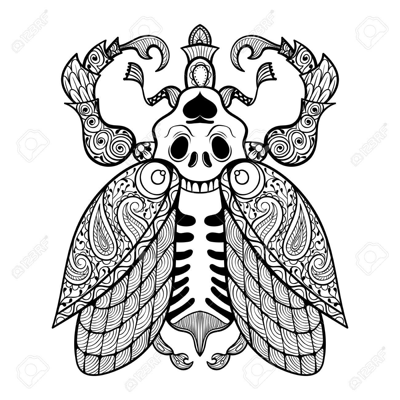 Dibujo Para Colorear De Bug Con El Cráneo Illustartion Zentangle