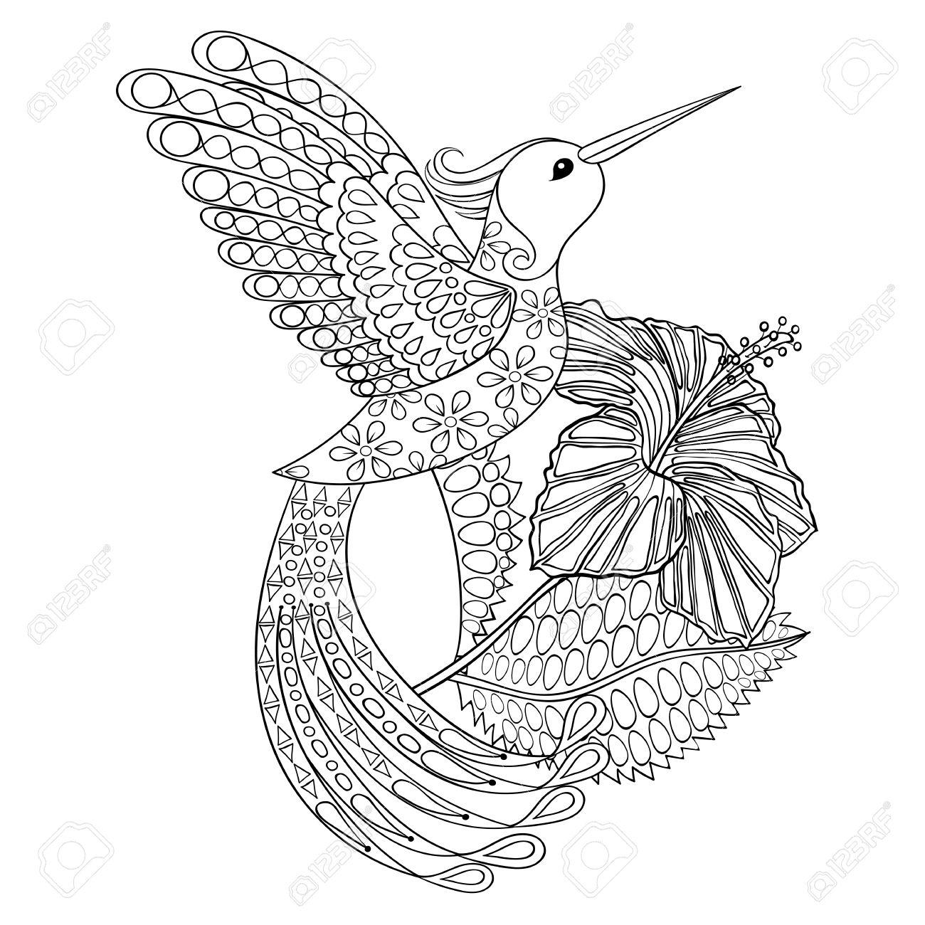 Malvorlage Mit Hummingbird In Hibiskus Zentangle Illustartion Fur