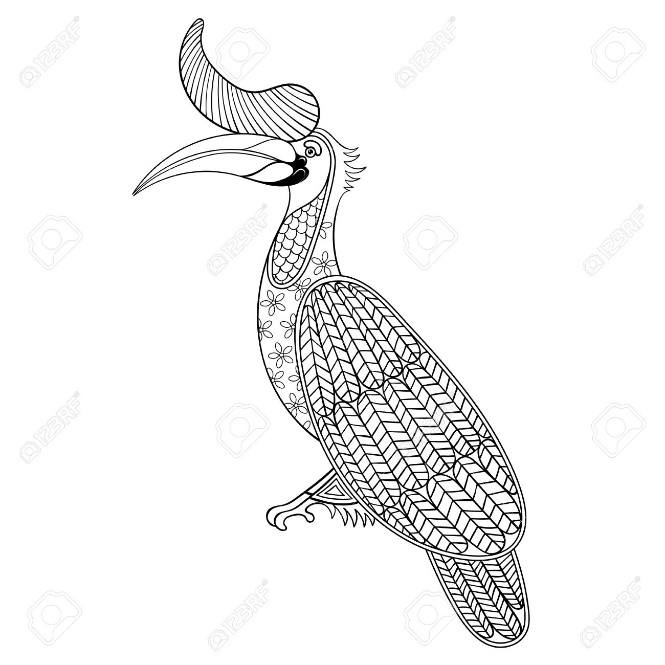 Coloring Page With Bird Rhinoceros Zentangle Illustartion Hornbill For Adult Books Or Tattoos