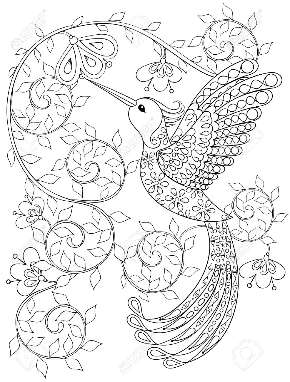 Coloring Page With Hummingbird, Zentangle Flying Bird For Adult ...