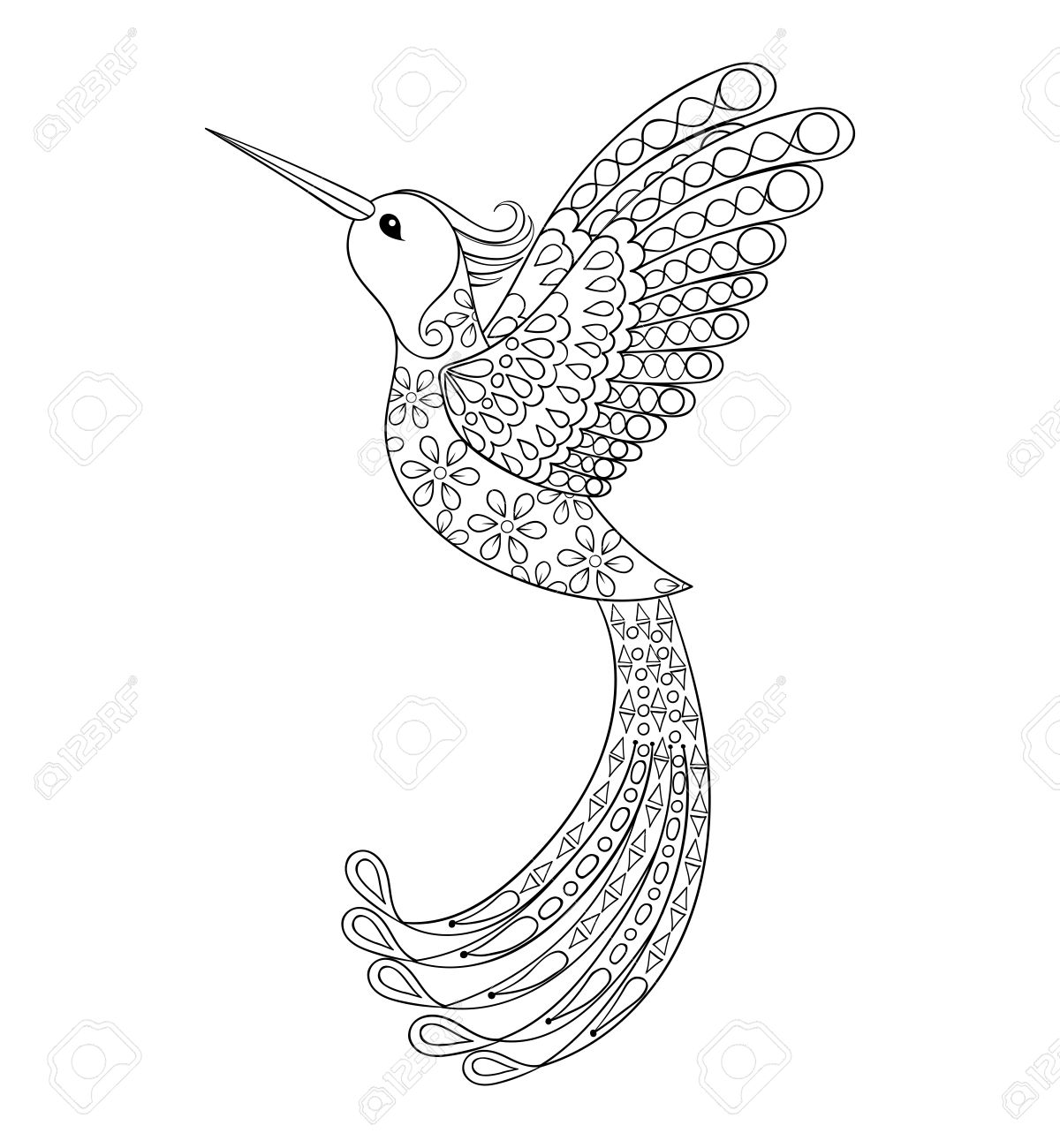 Vector zentangle tribal hummingbird flying bird totem for adult coloring page or tattoos with high details isolated on background