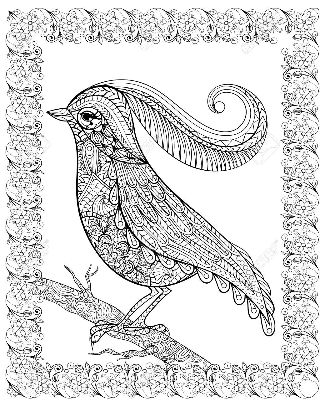 Hand drawn bel oiseau délicat assis sur une branche encadrée pour anti stress adulte coloriage
