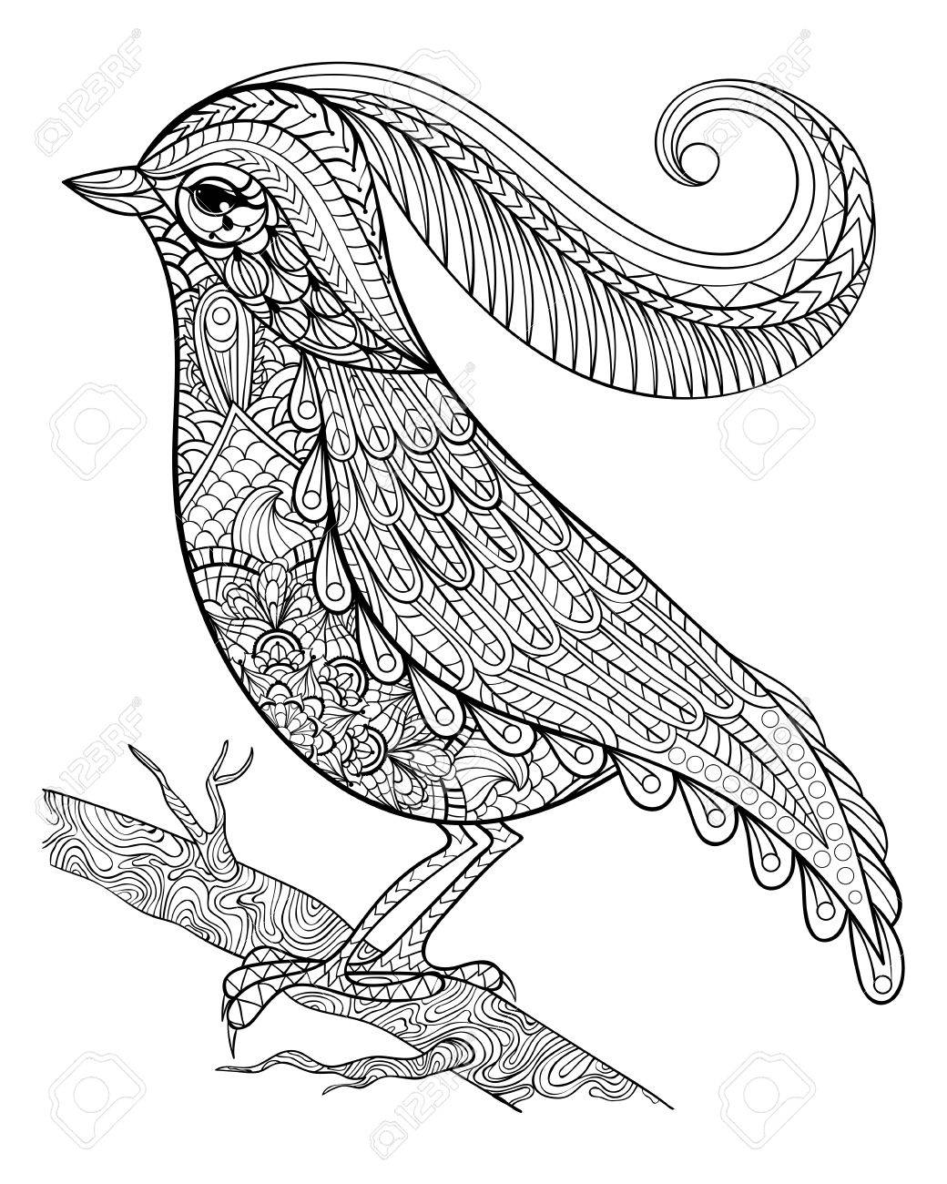 Beau Hand Drawnbeautiful Delicate Bird Sitting On A Branch Framed For Adult Anti  Stress Coloring Page With