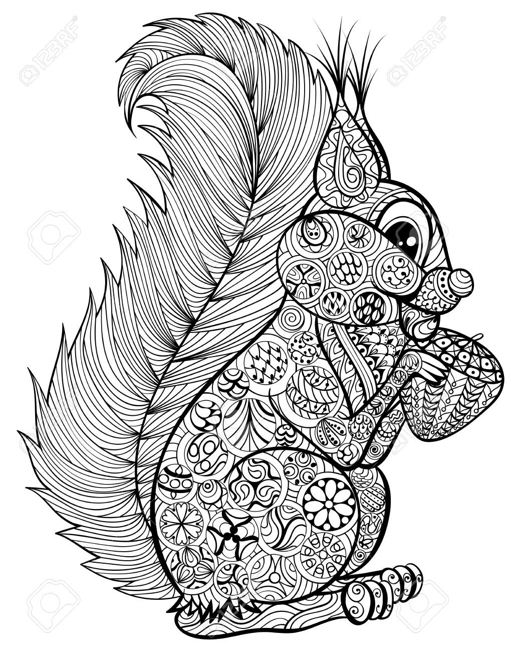 Hand Drawn Funny Squirrel With Nut For Adult Anti Stress Coloring Page High Details Isolated