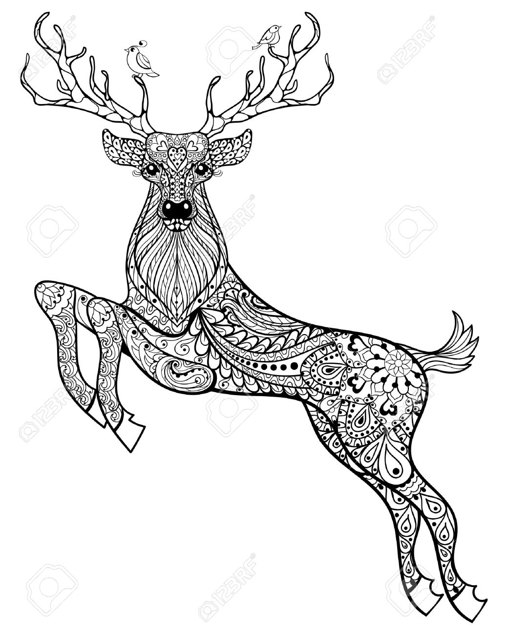 Hand drawn magic horned deer with birds for adult anti stress Coloring Page with high details isolated on white background, illustration in zentangle style. Vector monochrome sketch. Animal collection. - 51458786