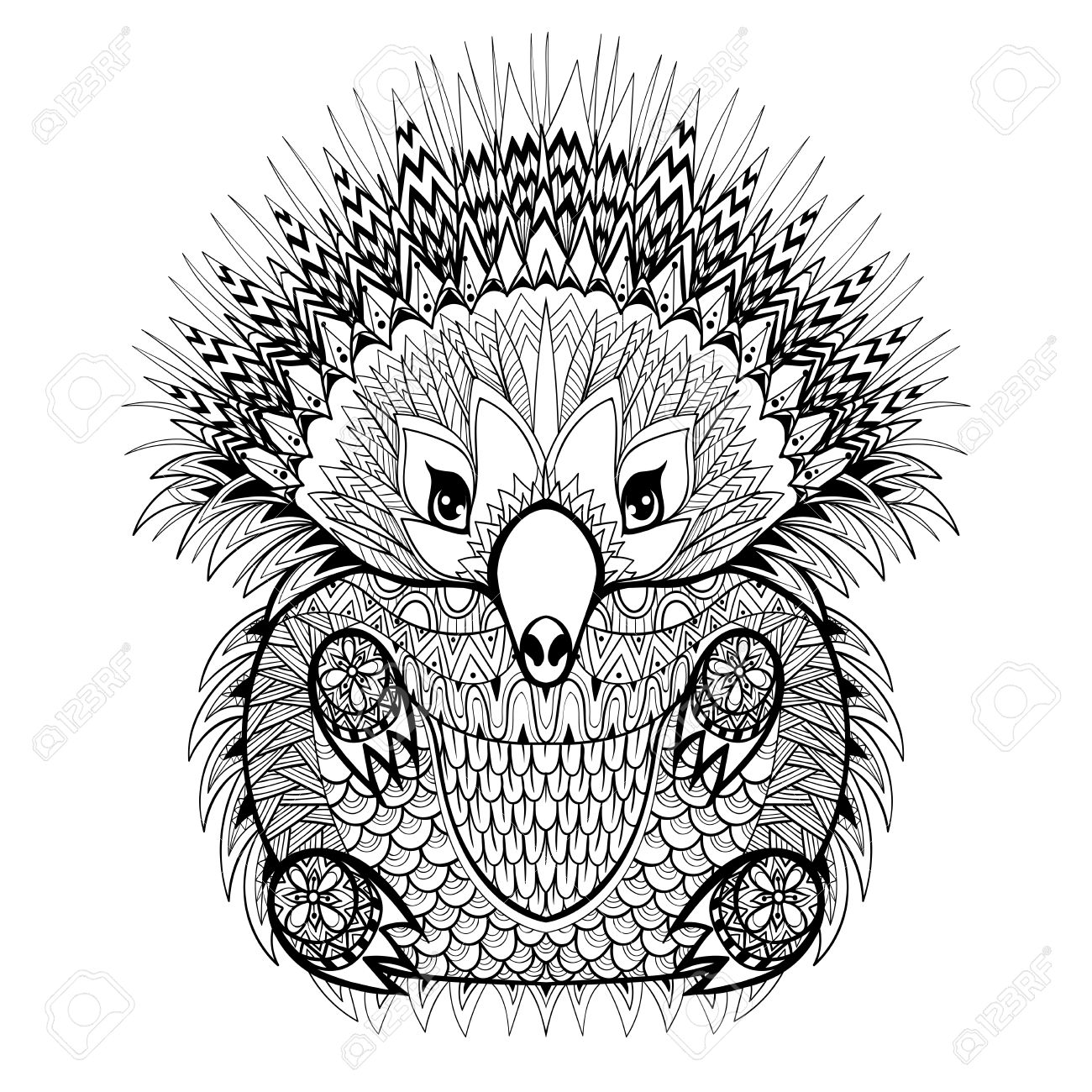 Hand Drawn Echidna Australian Animal Illustration For Antistress Coloring Page With High Details Isolated On
