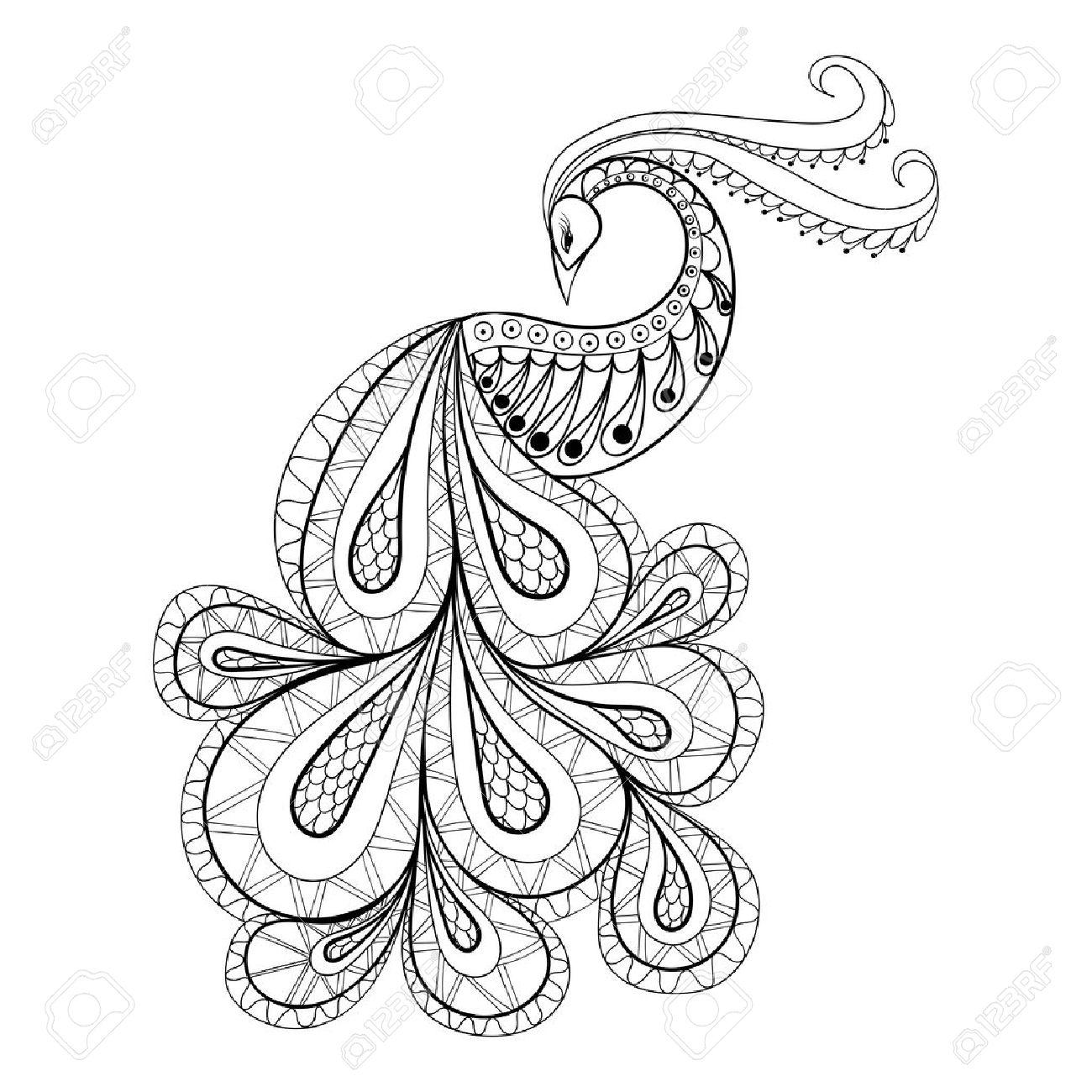 Mano Dibujado Pavo Real Para Colorear Antiestrés Con Detalles Altos Aislados Sobre Fondo Blanco Ilustración En Estilo Del Zentangle Ilustración