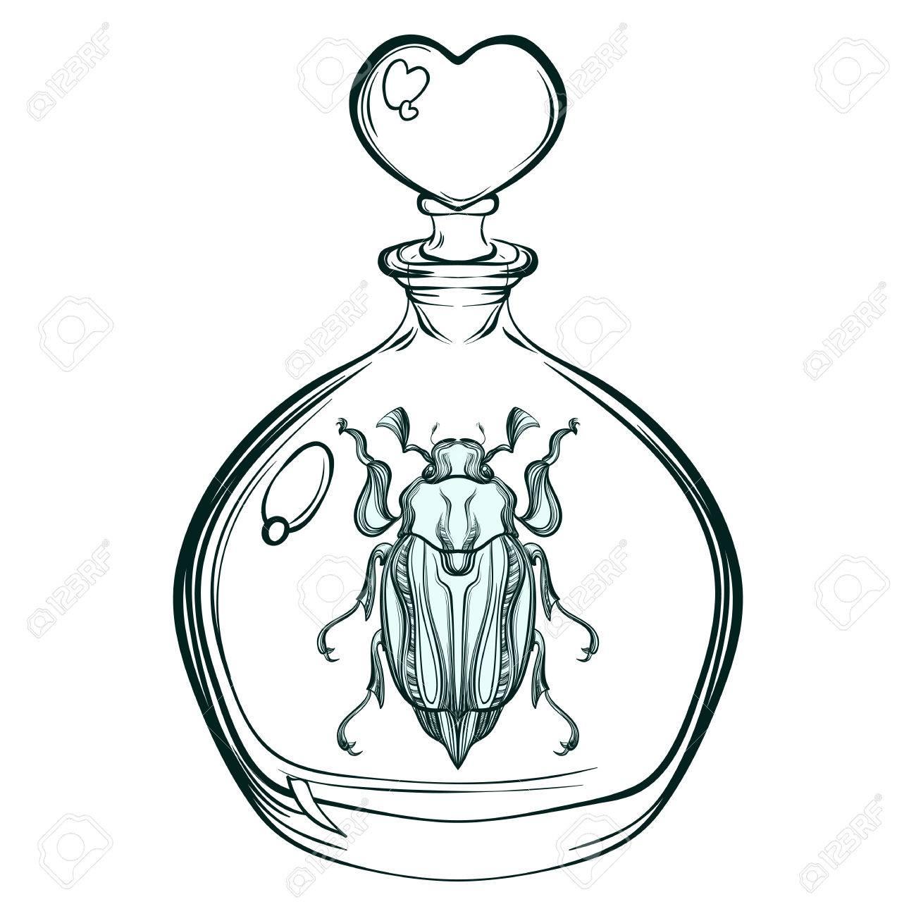 Hand Gezeichnet Gravur Skizze Der Maikäfer. Käfer In Der Glasflasche ...