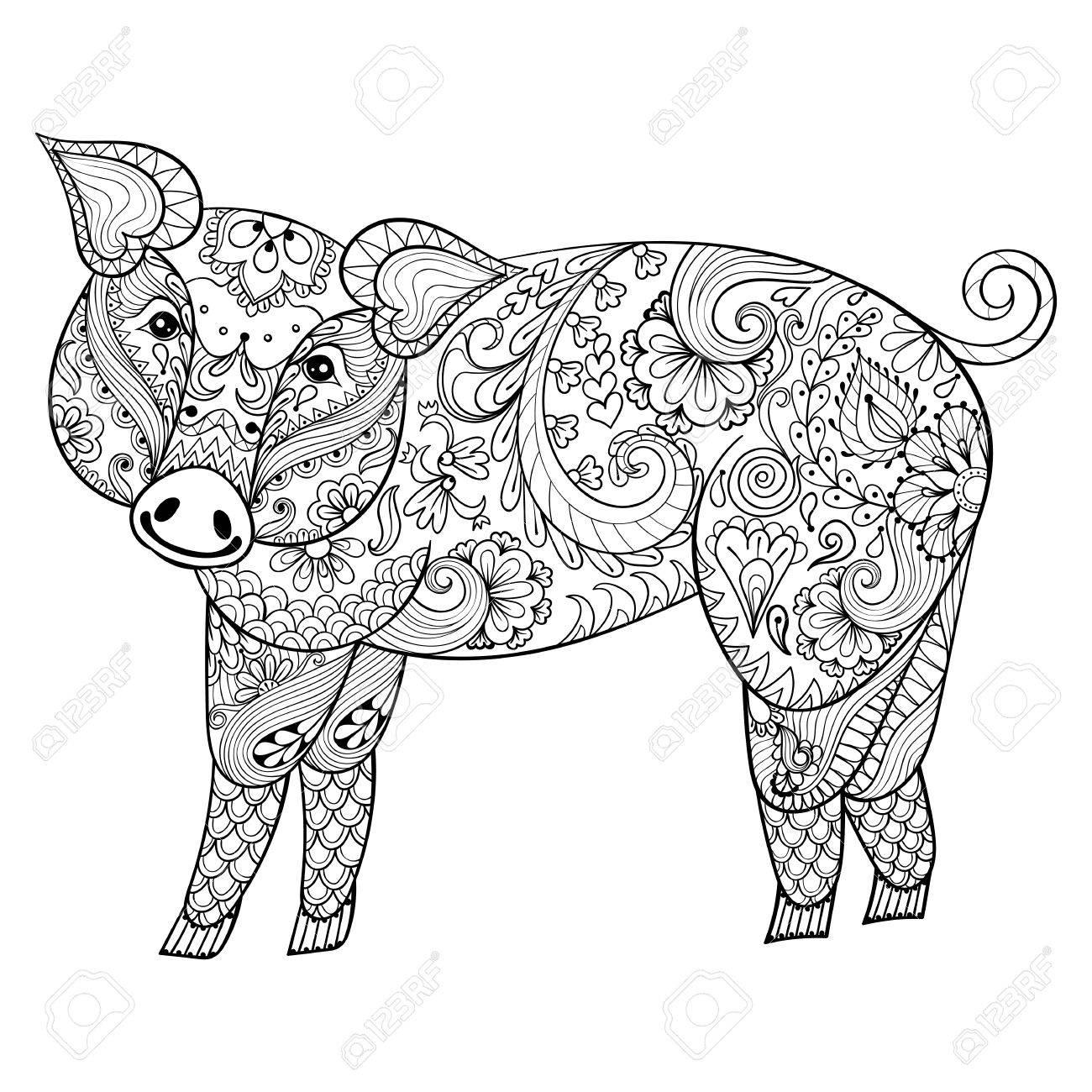 Vector Schwein. Zentangle Schwein Illustration, Schweine Druck Für ...