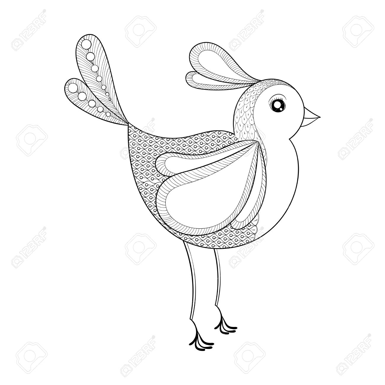 Vector Bird Coloring Page With Zentangled Hand Drawn