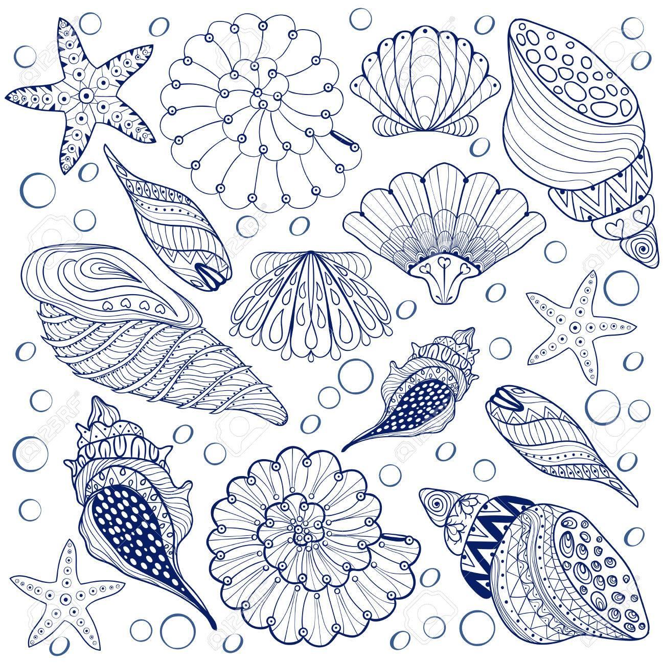 Vector Conjunto Cáscaras, Conchas Azules Zentangle Para Colorear ...