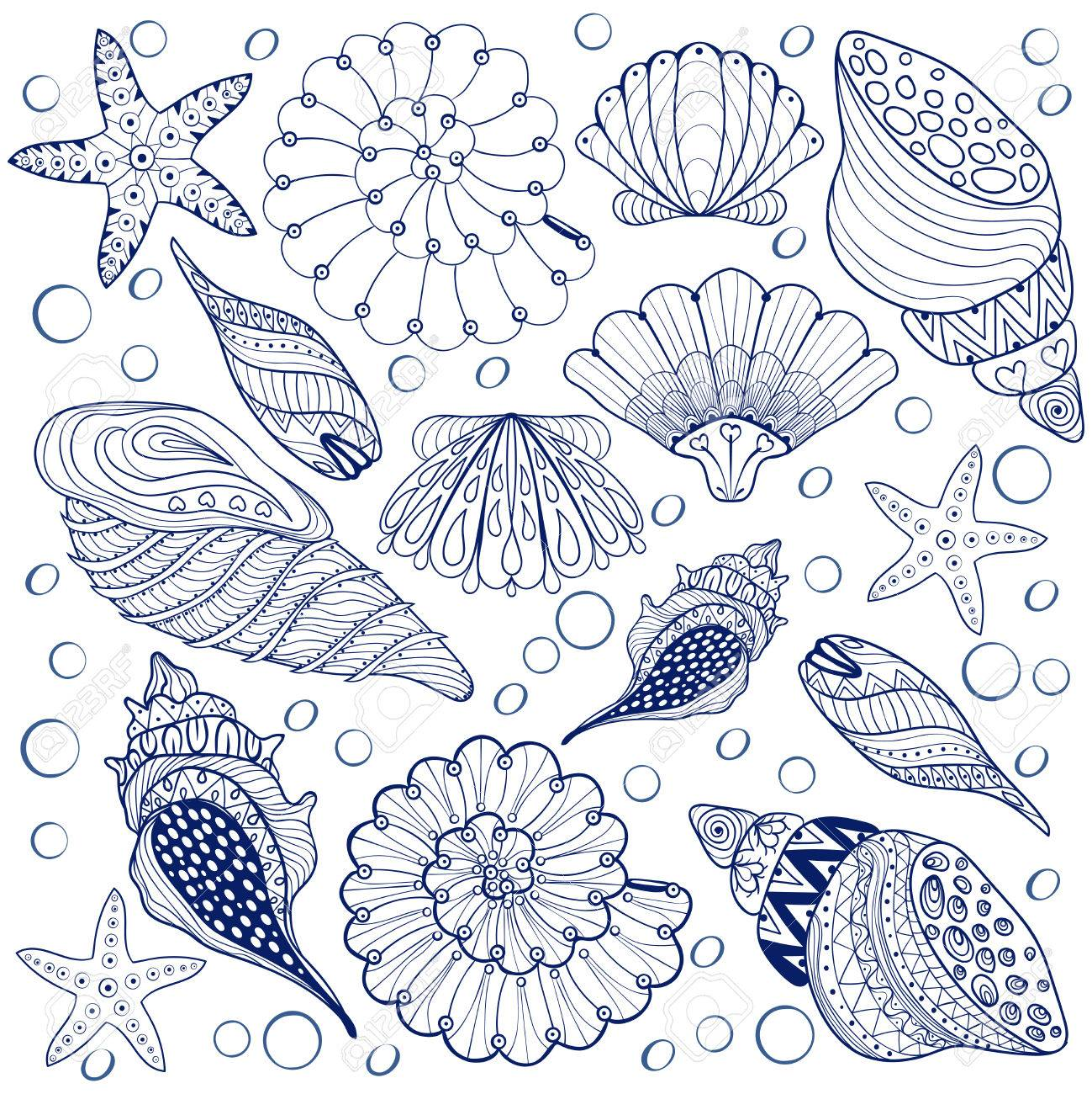 Vector Set Shells, Zentangle Blaue Seashells Für Erwachsene Anti ...