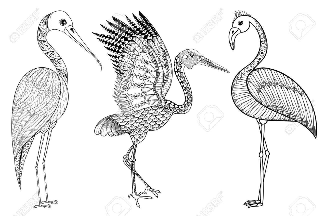 Zentangle Hand Gezeichnet Stork, Flamingo, Brolga Für Erwachsene ...