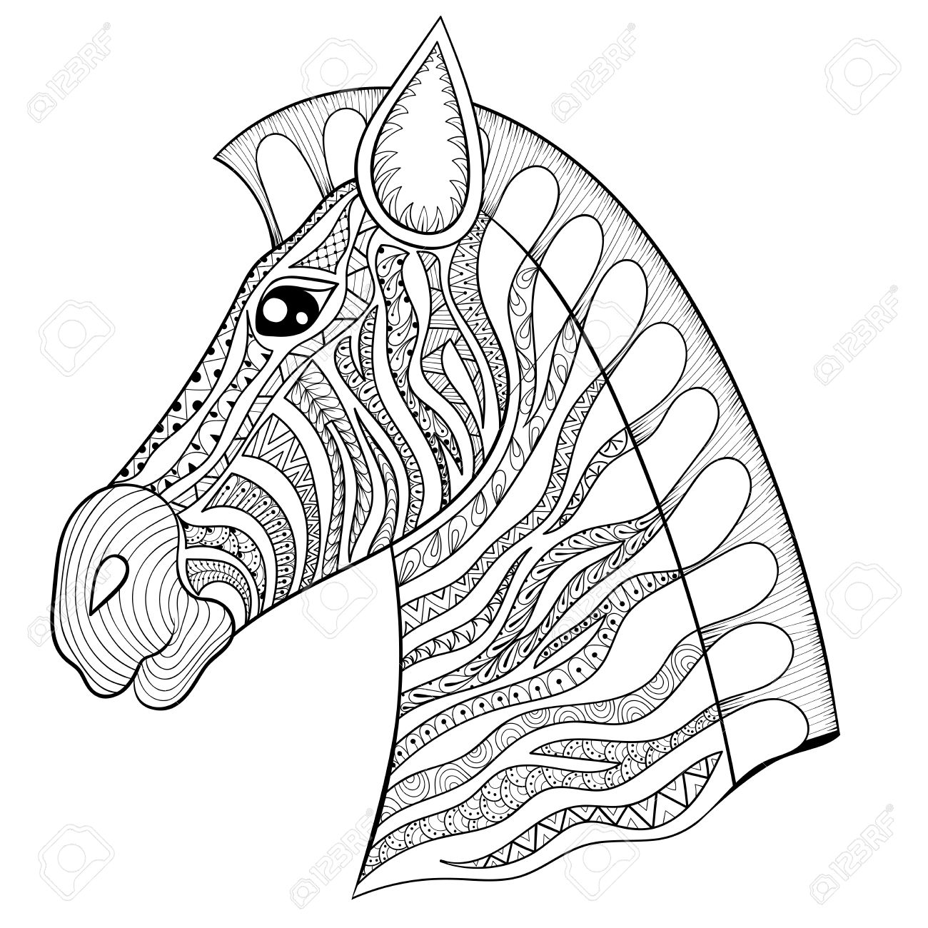 vector zentangle zebra head illustration horse print for