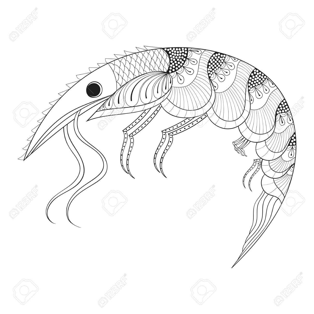 Marine animal coloring pages - 57081485 Hand Drawn Shrimp For Adult Anti Stress Coloring Pages Monochrome Post Card Mehendi T Shirt Drawing Marine Animals